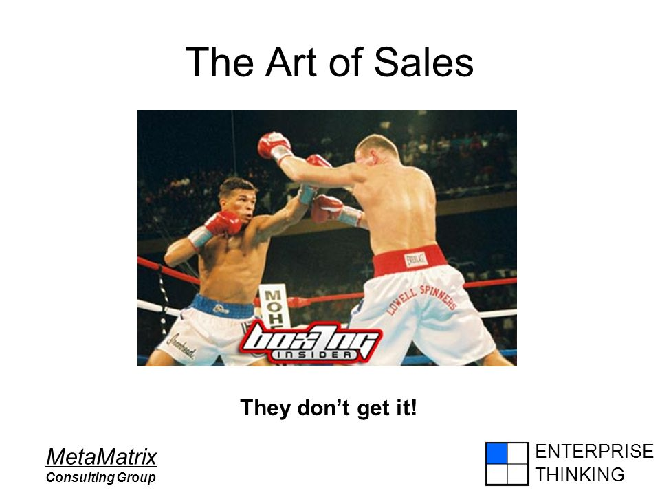 ENTERPRISE THINKING MetaMatrix Consulting Group The Art of Sales They don't get it!