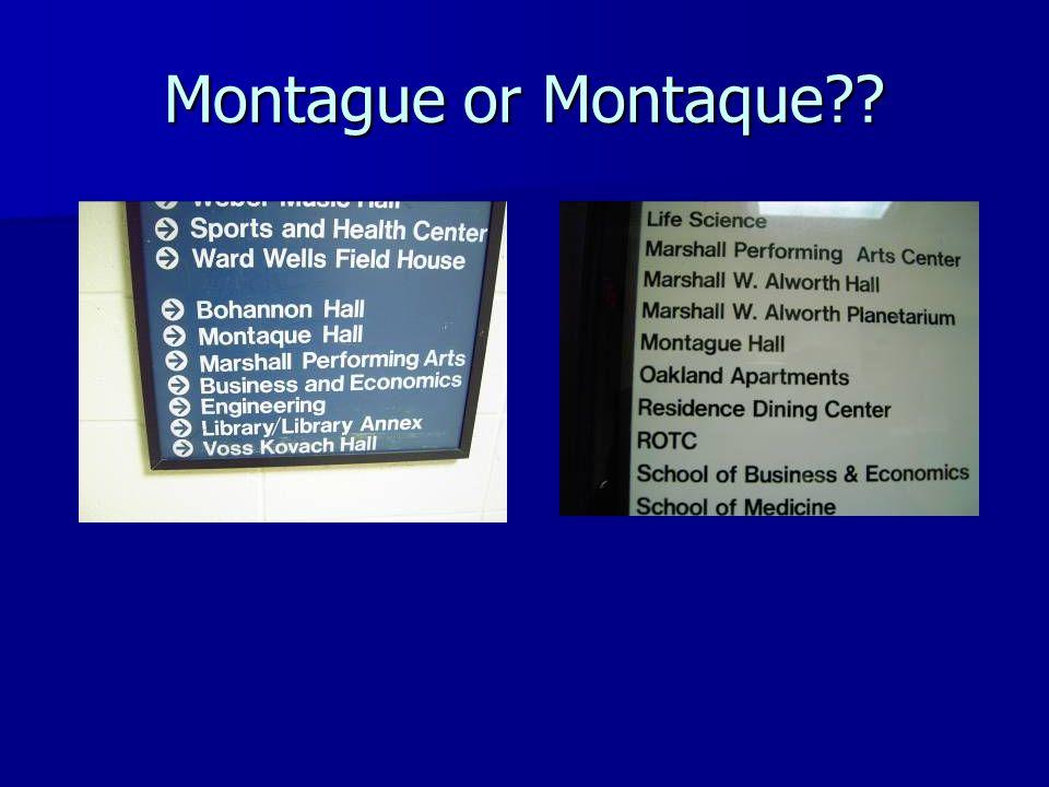 Montague or Montaque