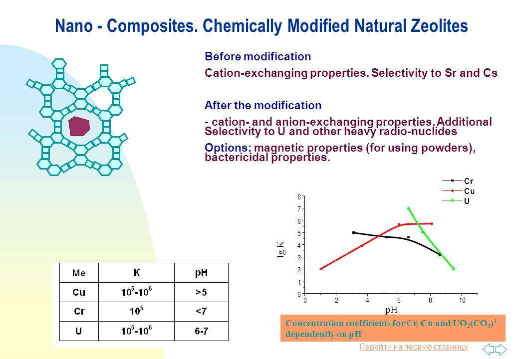 Перейти на первую страницу Nano - Composites.