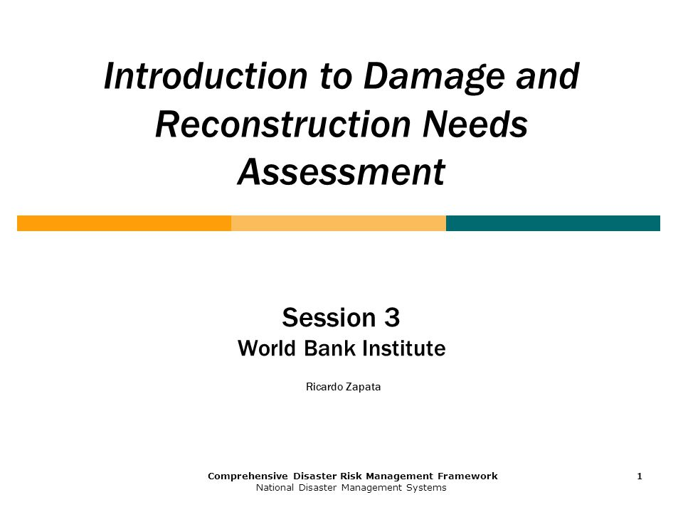 1 Comprehensive Disaster Risk Management Framework National Disaster Management Systems 1111 Introduction to Damage and Reconstruction Needs Assessment Session 3 World Bank Institute Ricardo Zapata