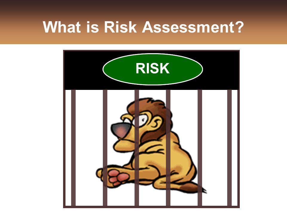 What is Risk Assessment DANGER RISK