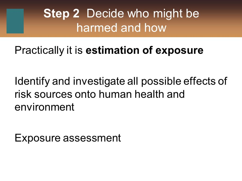 Step 2 Decide who might be harmed and how Practically it is estimation of exposure Identify and investigate all possible effects of risk sources onto