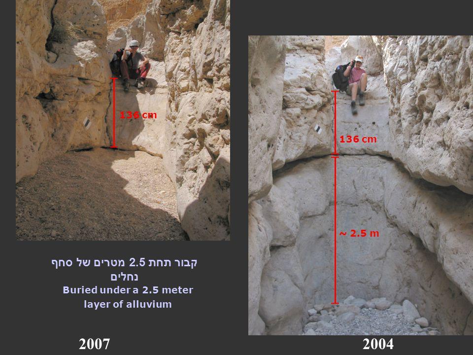 20072004 136 cm ~ 2.5 m קבור תחת 2.5 מטרים של סחף נחלים Buried under a 2.5 meter layer of alluvium