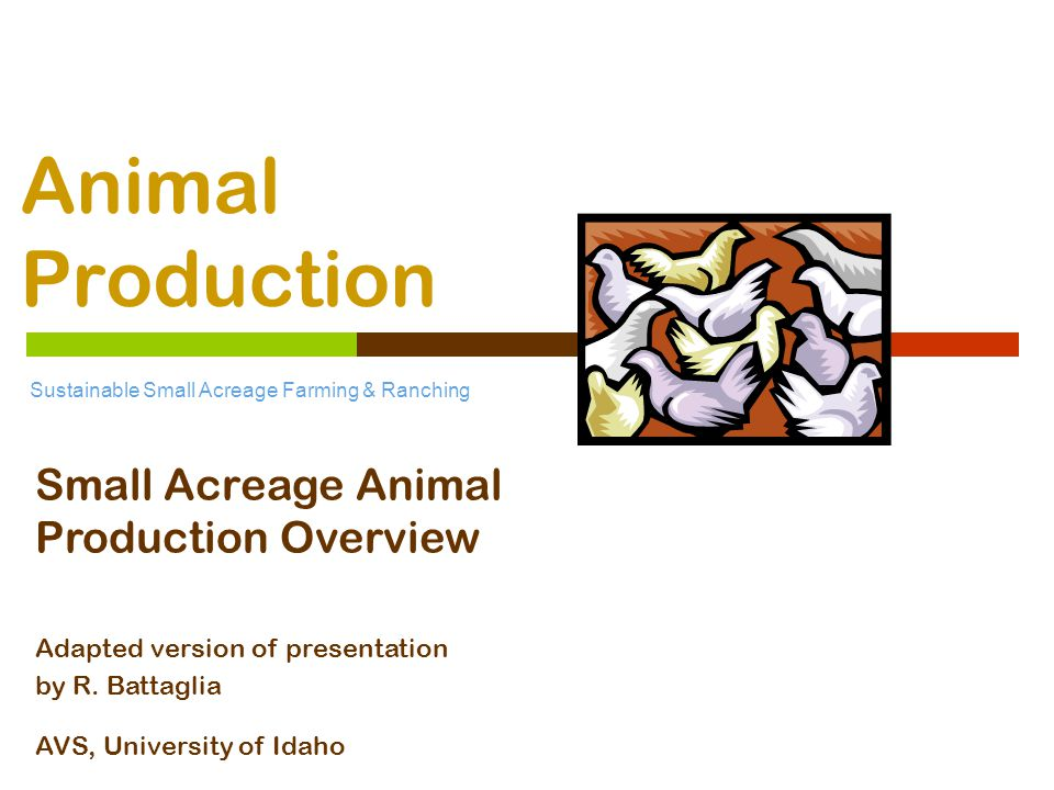 Sustainable Small Acreage Farming & Ranching  Marketing  Animal of choice  Temperament choice  Site suitability  Zoning restrictions  Facilities required  Intent of enterprise  Source of animals  Nutrition  Feeds and Feeding Small Acreage Animal Management Considerations
