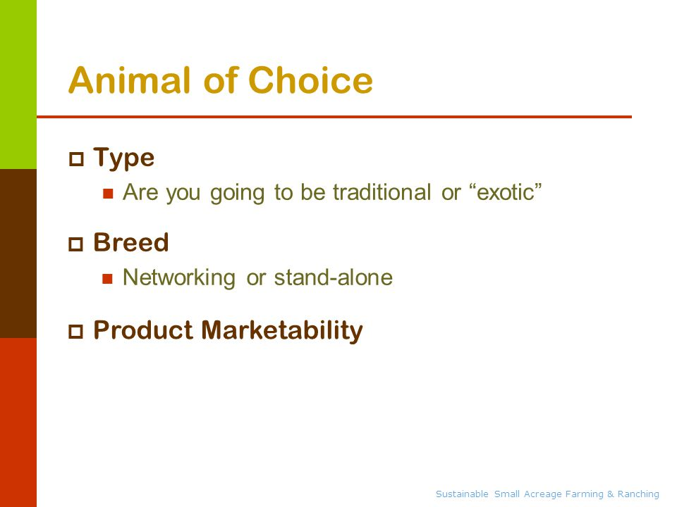 Sustainable Small Acreage Farming & Ranching Animal of Choice  Type Are you going to be traditional or exotic  Breed Networking or stand-alone  Product Marketability