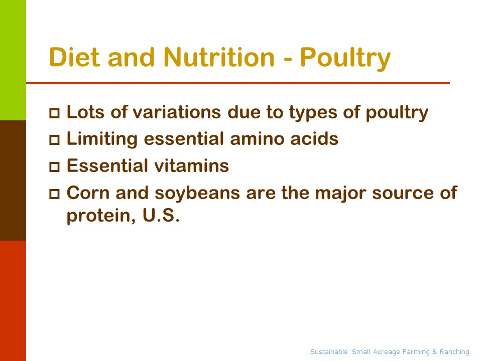 Sustainable Small Acreage Farming & Ranching Diet and Nutrition - Poultry  Lots of variations due to types of poultry  Limiting essential amino acids  Essential vitamins  Corn and soybeans are the major source of protein, U.S.