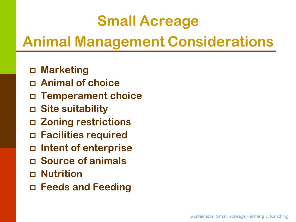 Sustainable Small Acreage Farming & Ranching  Marketing  Animal of choice  Temperament choice  Site suitability  Zoning restrictions  Facilities required  Intent of enterprise  Source of animals  Nutrition  Feeds and Feeding Small Acreage Animal Management Considerations