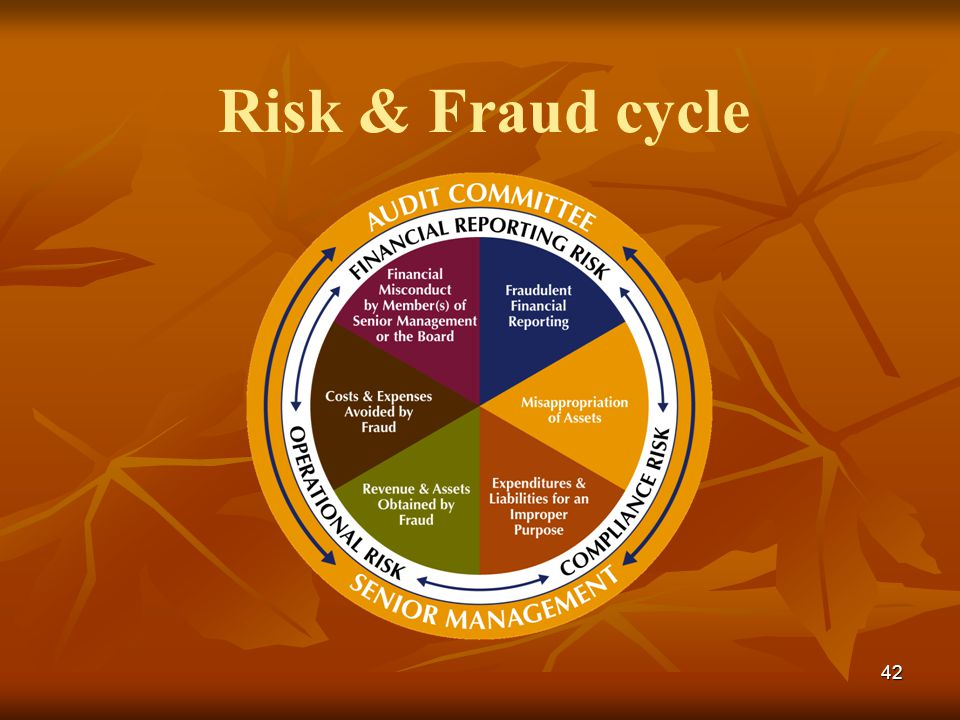 42 Risk & Fraud cycle