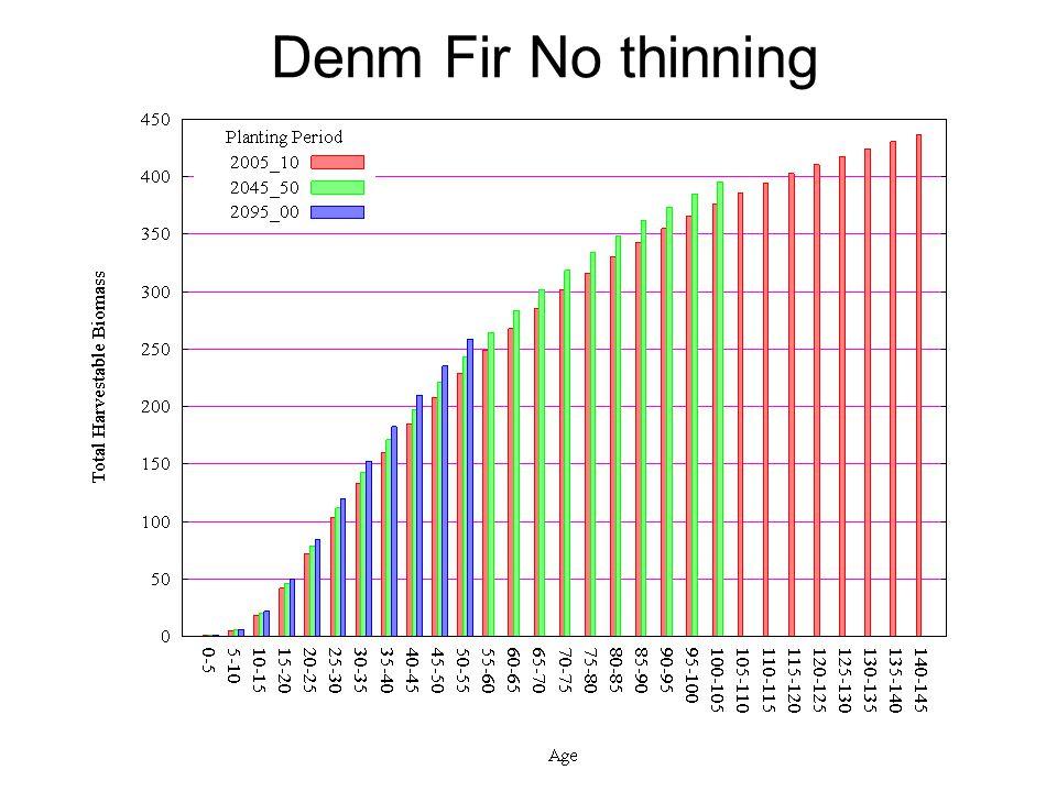 Denm Fir No thinning