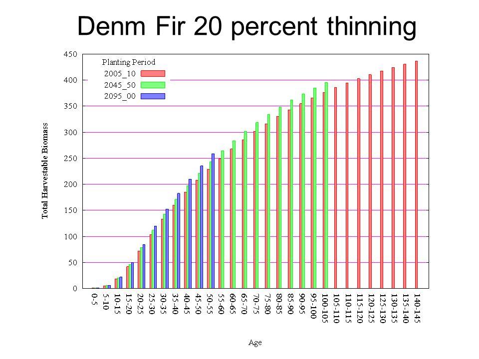 Denm Fir 20 percent thinning