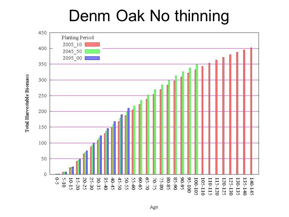 Denm Oak No thinning
