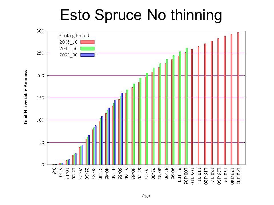 Esto Spruce No thinning