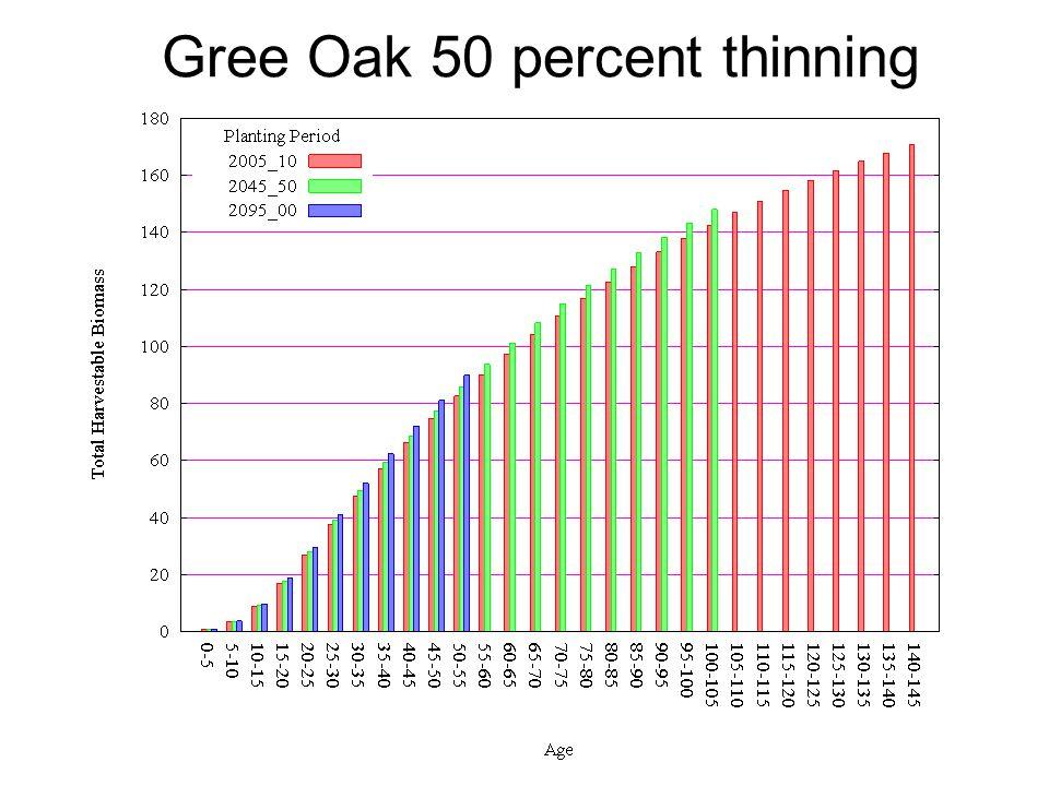Gree Oak 50 percent thinning