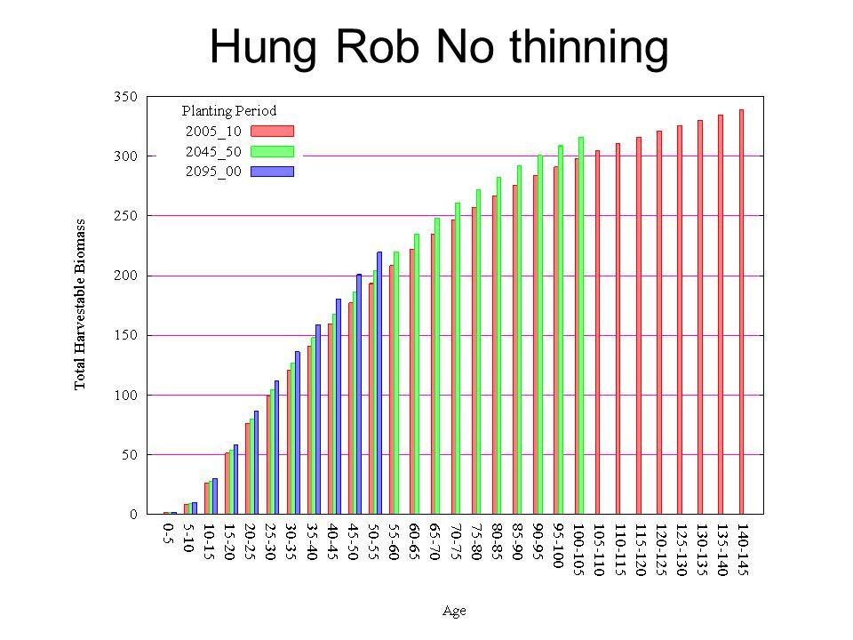 Hung Rob No thinning