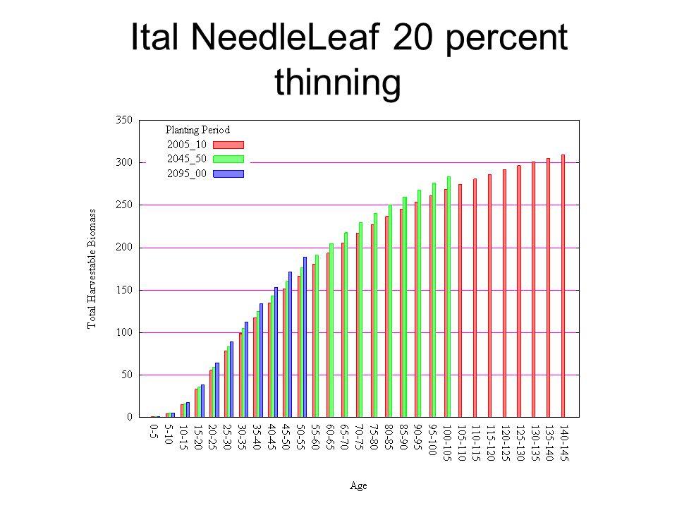 Ital NeedleLeaf 20 percent thinning