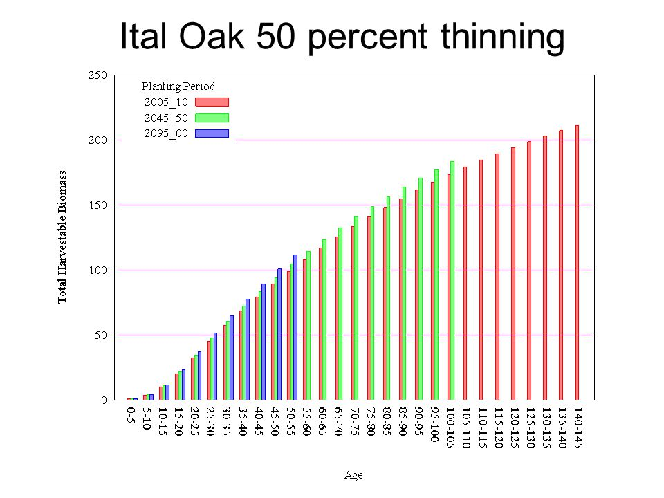 Ital Oak 50 percent thinning