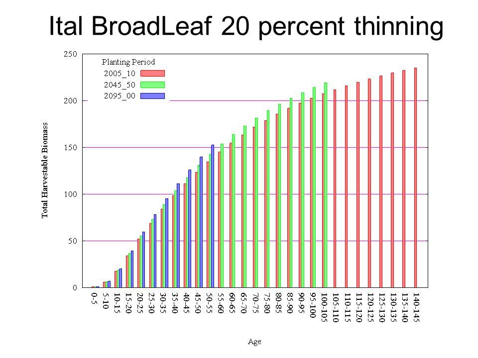 Ital BroadLeaf 20 percent thinning