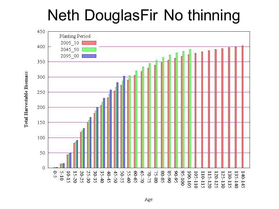Neth DouglasFir No thinning