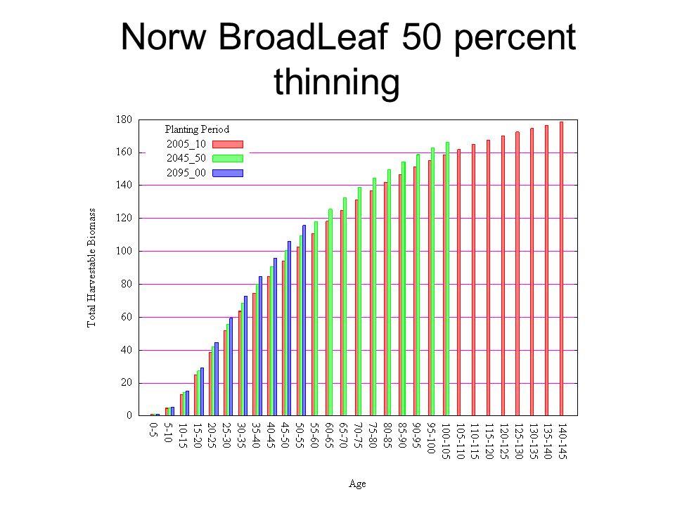 Norw BroadLeaf 50 percent thinning