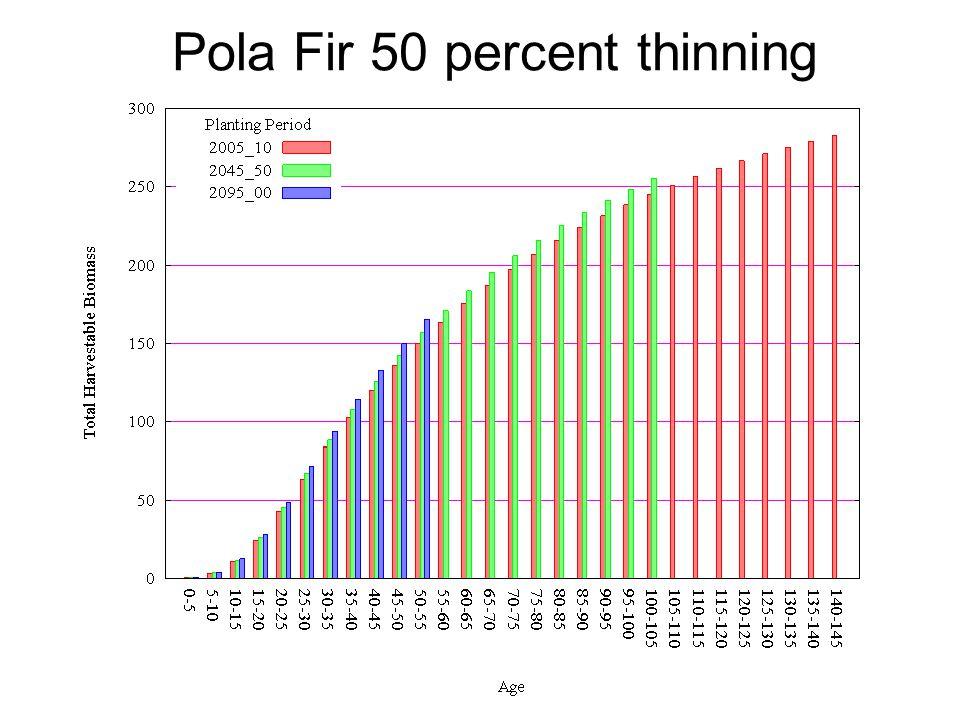 Pola Fir 50 percent thinning