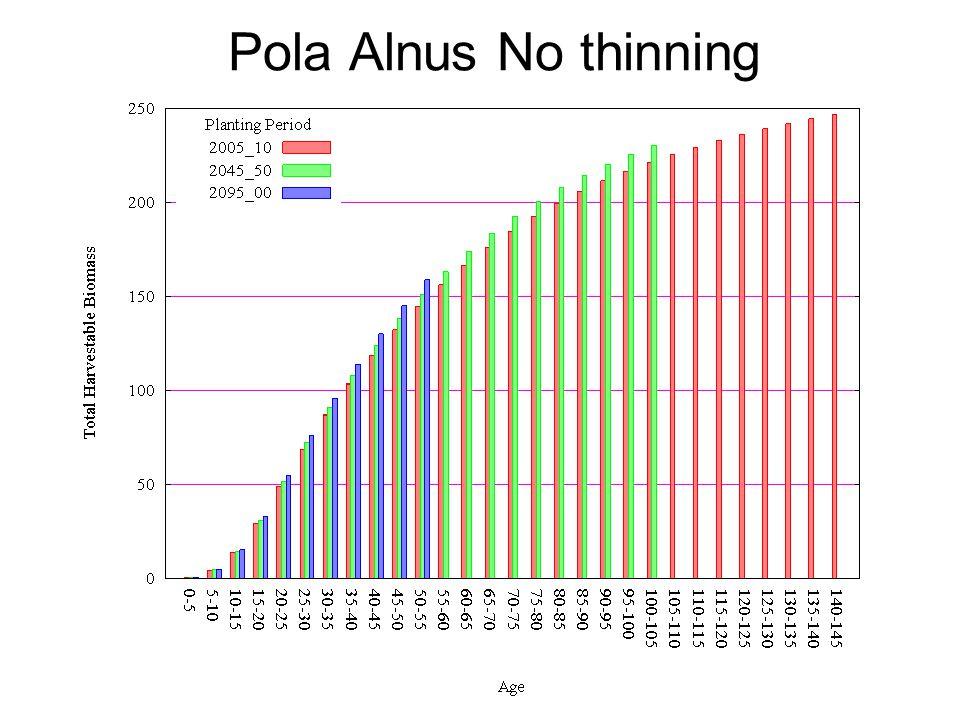 Pola Alnus No thinning