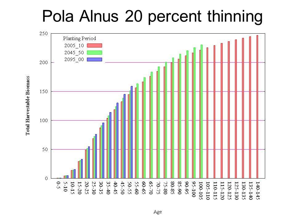 Pola Alnus 20 percent thinning