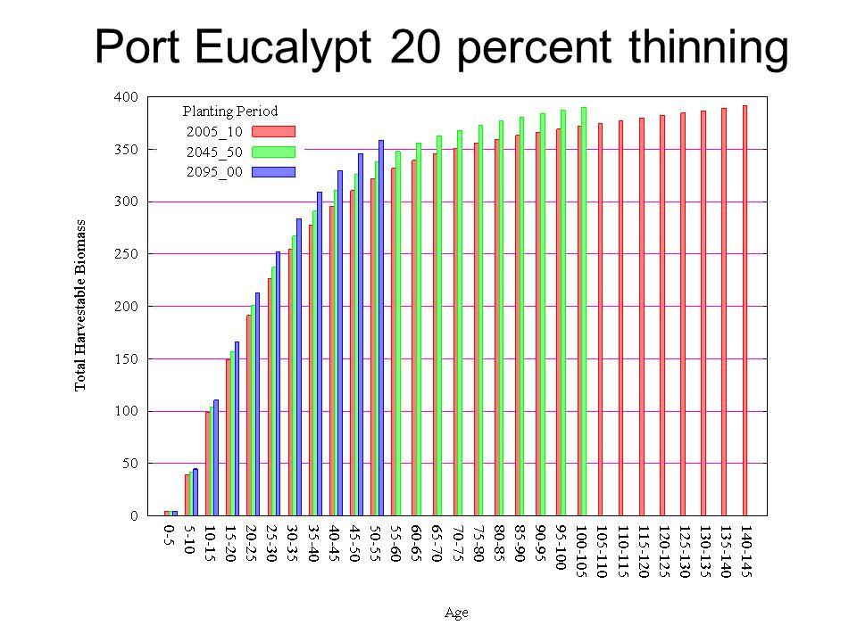 Port Eucalypt 20 percent thinning