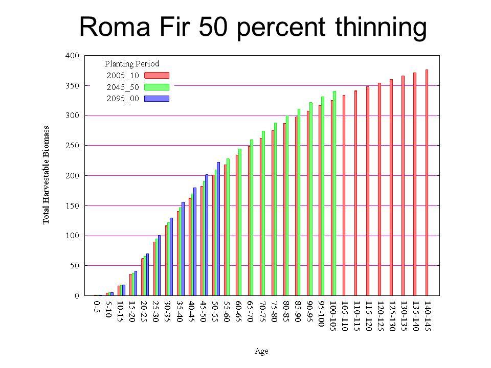 Roma Fir 50 percent thinning