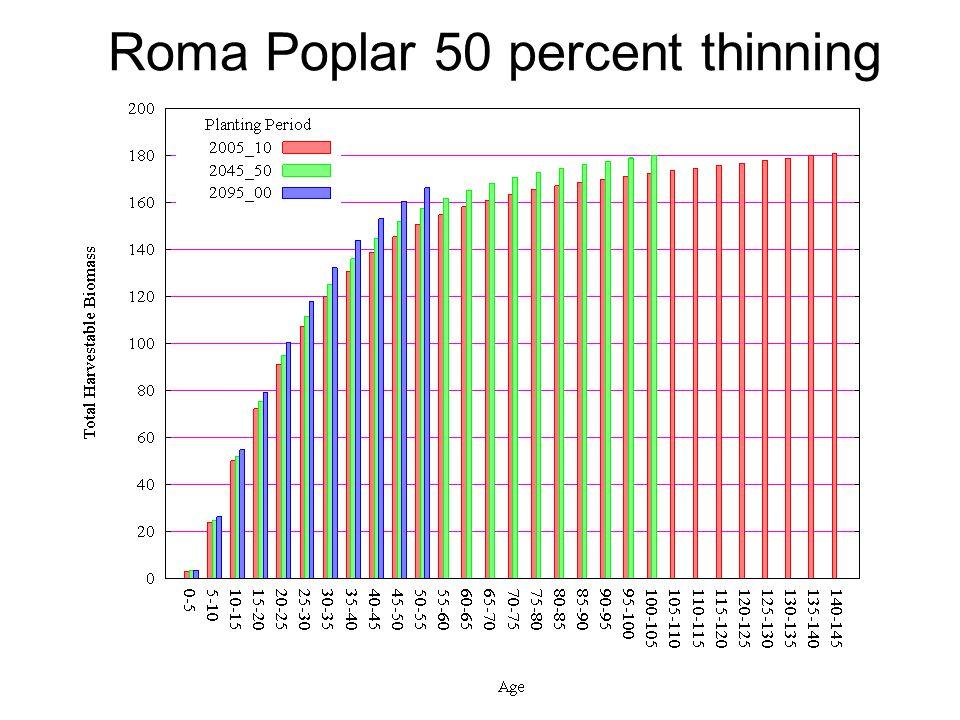 Roma Poplar 50 percent thinning