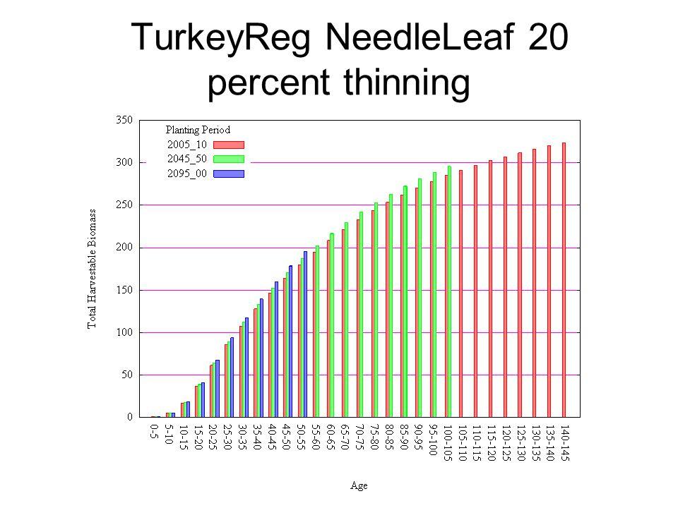 TurkeyReg NeedleLeaf 20 percent thinning