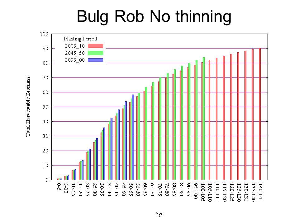 Bulg Rob No thinning
