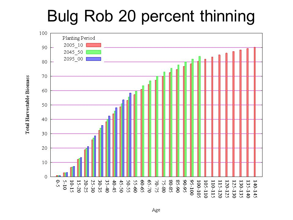 Bulg Rob 20 percent thinning