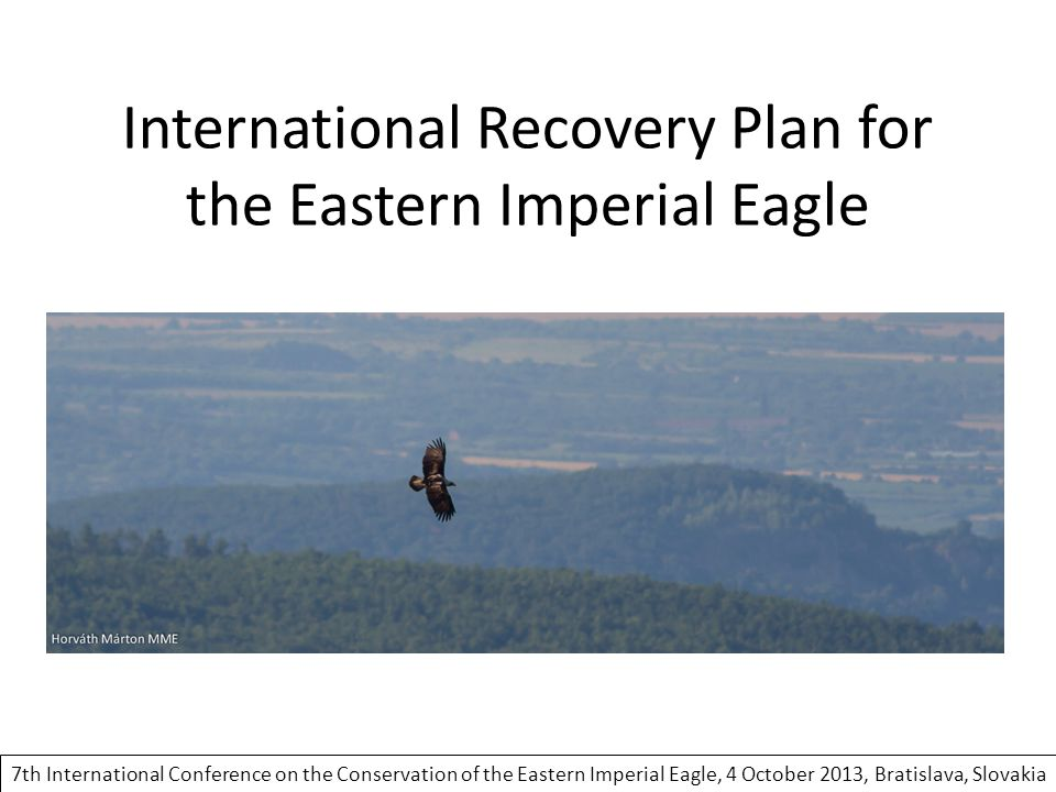 International Recovery Plan for the Eastern Imperial Eagle 7th International Conference on the Conservation of the Eastern Imperial Eagle, 4 October 2013, Bratislava, Slovakia