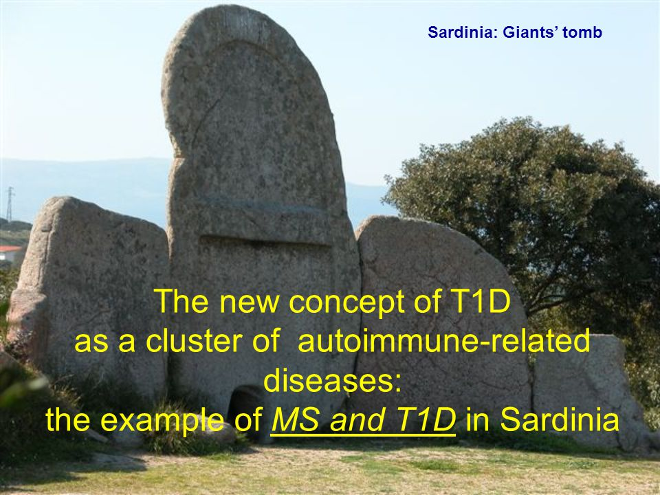 The new concept of T1D as a cluster of autoimmune-related diseases: the example of MS and T1D in Sardinia Sardinia: Giants' tomb