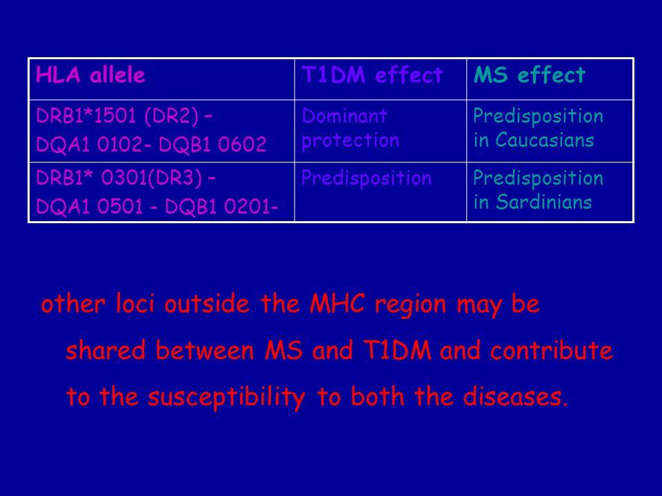 HLA alleleT1DM effectMS effect DRB1*1501 (DR2) – DQA1 0102- DQB1 0602 Dominant protection Predisposition in Caucasians DRB1* 0301(DR3) – DQA1 0501 - D
