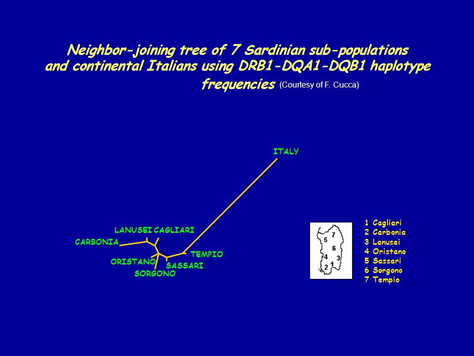 Neighbor-joining tree of 7 Sardinian sub-populations and continental Italians using DRB1-DQA1-DQB1 haplotype frequencies LANUSEICAGLIARI CARBONIA ORIS