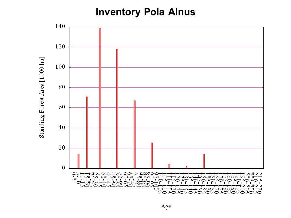 Inventory Pola Alnus