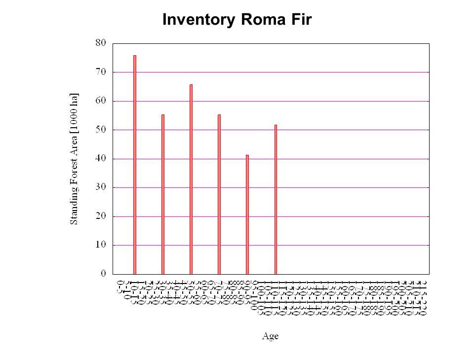 Inventory Roma Fir