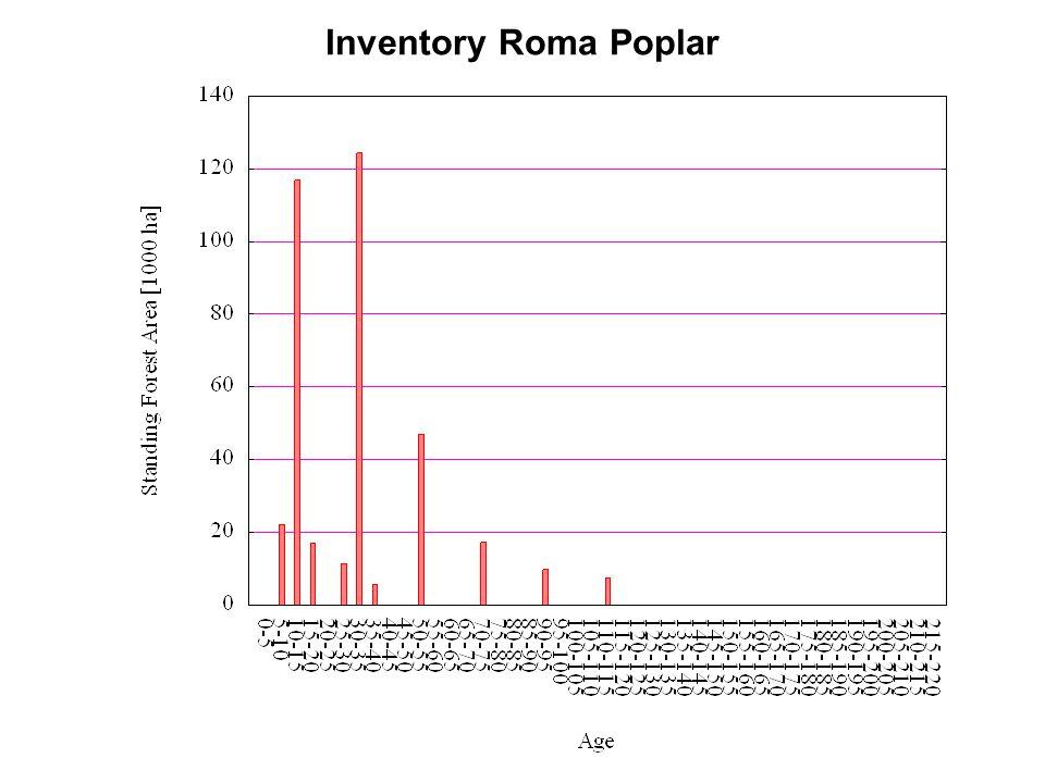 Inventory Roma Poplar