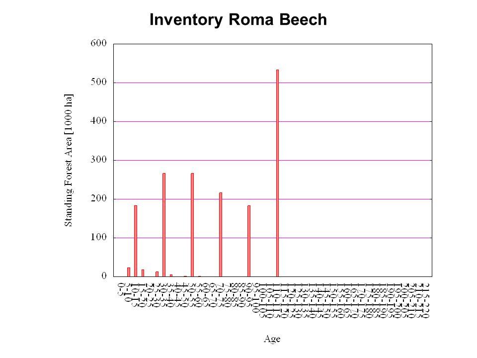 Inventory Roma Beech
