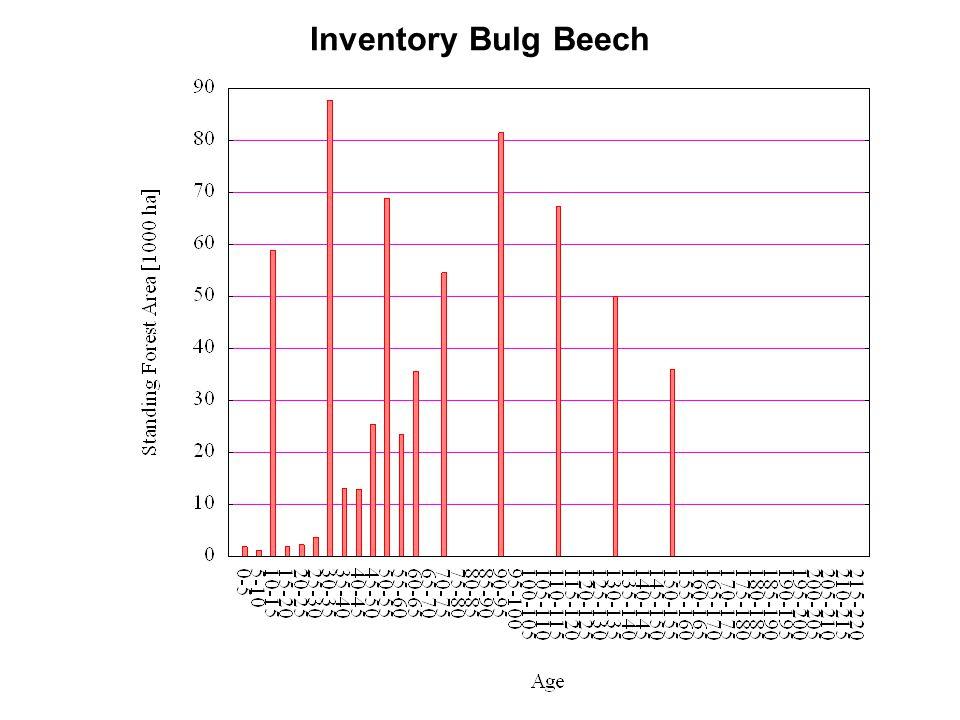 Inventory Bulg Beech