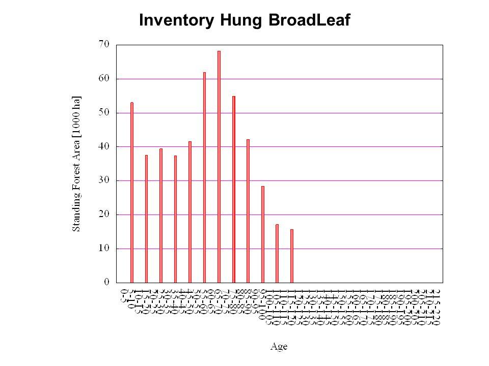 Inventory Hung BroadLeaf
