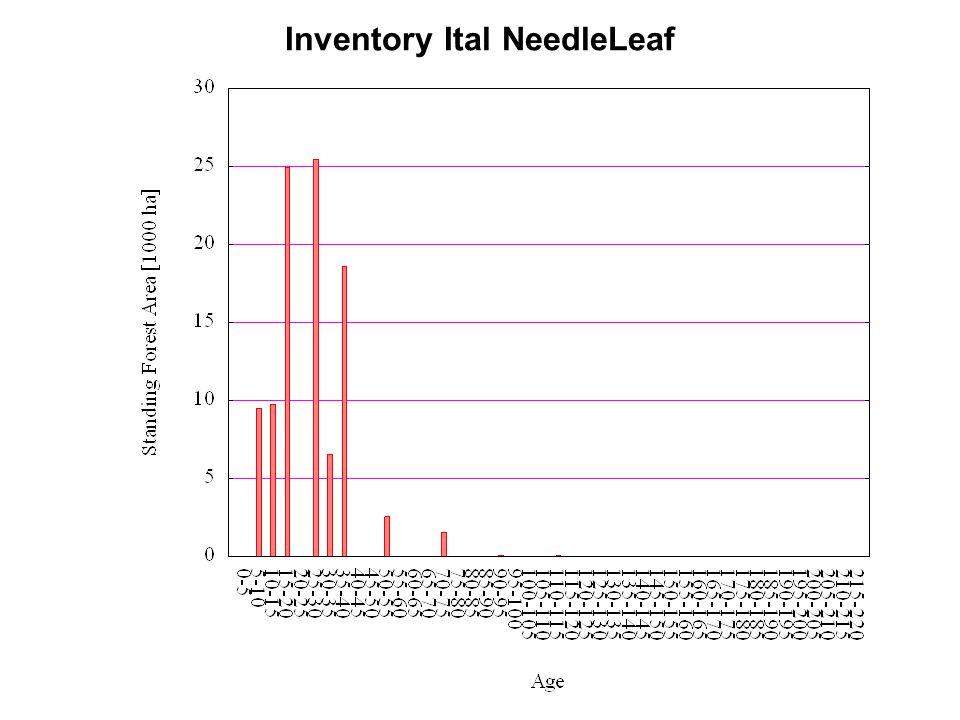 Inventory Ital NeedleLeaf