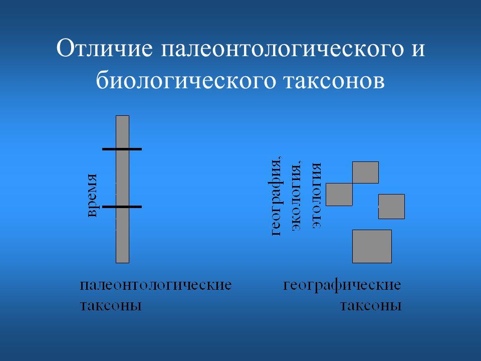 Отличие палеонтологического и биологического таксонов