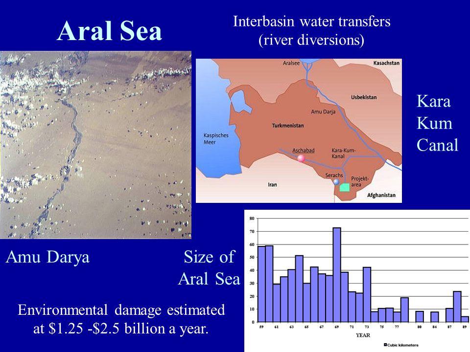 Amu Darya Size of Aral Sea Kara Kum Canal Environmental damage estimated at $1.25 -$2.5 billion a year. Interbasin water transfers (river diversions)