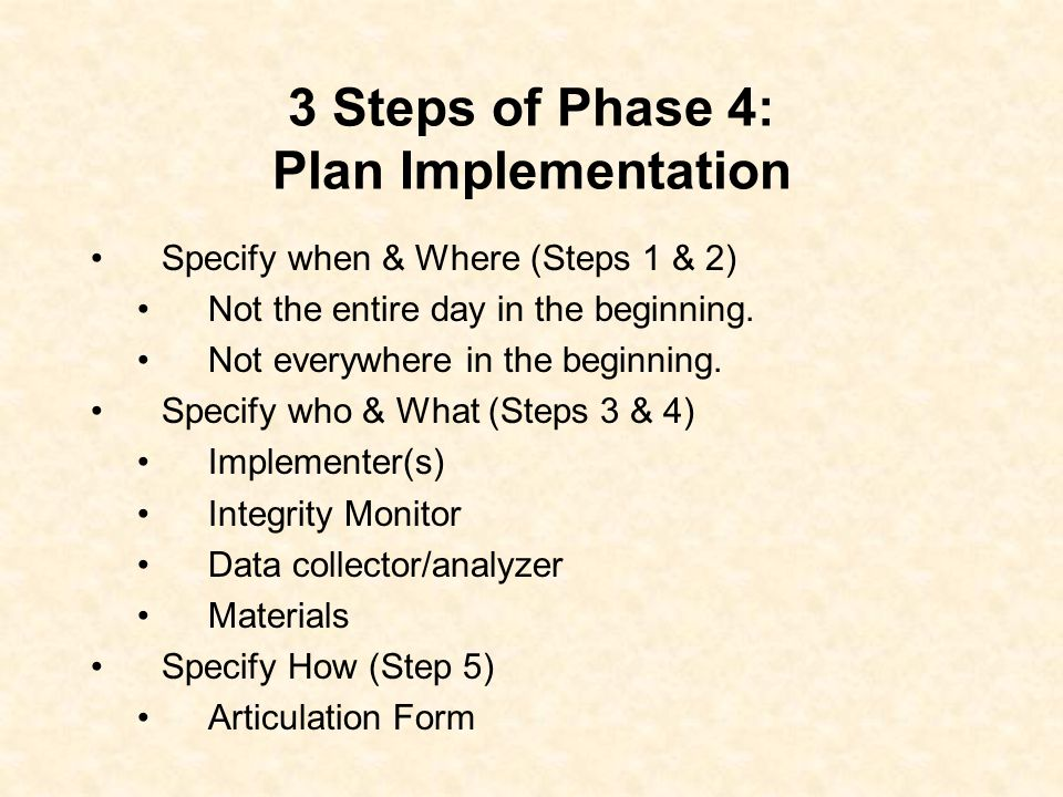 Phase 4: Plan Implementation Support & Integrity