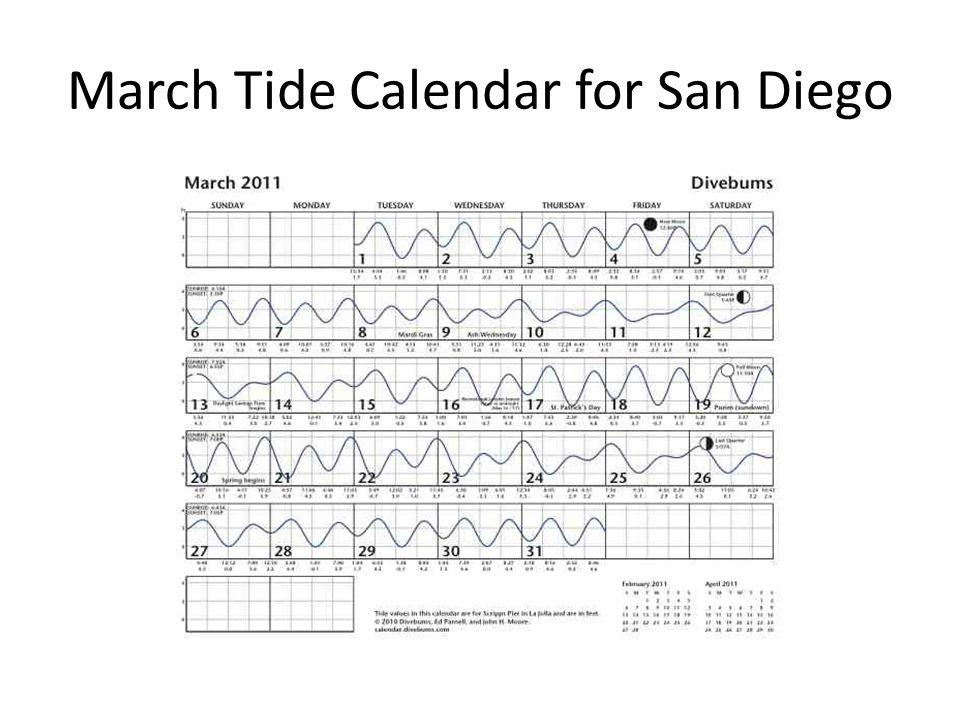 March Tide Calendar for San Diego