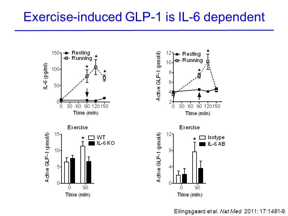 Exercise-induced GLP-1 is IL-6 dependent Ellingsgaard et al. Nat Med 2011; 17:1481-9.