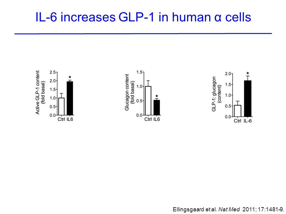 IL-6 increases GLP-1 in human α cells Ellingsgaard et al. Nat Med 2011; 17:1481-9.