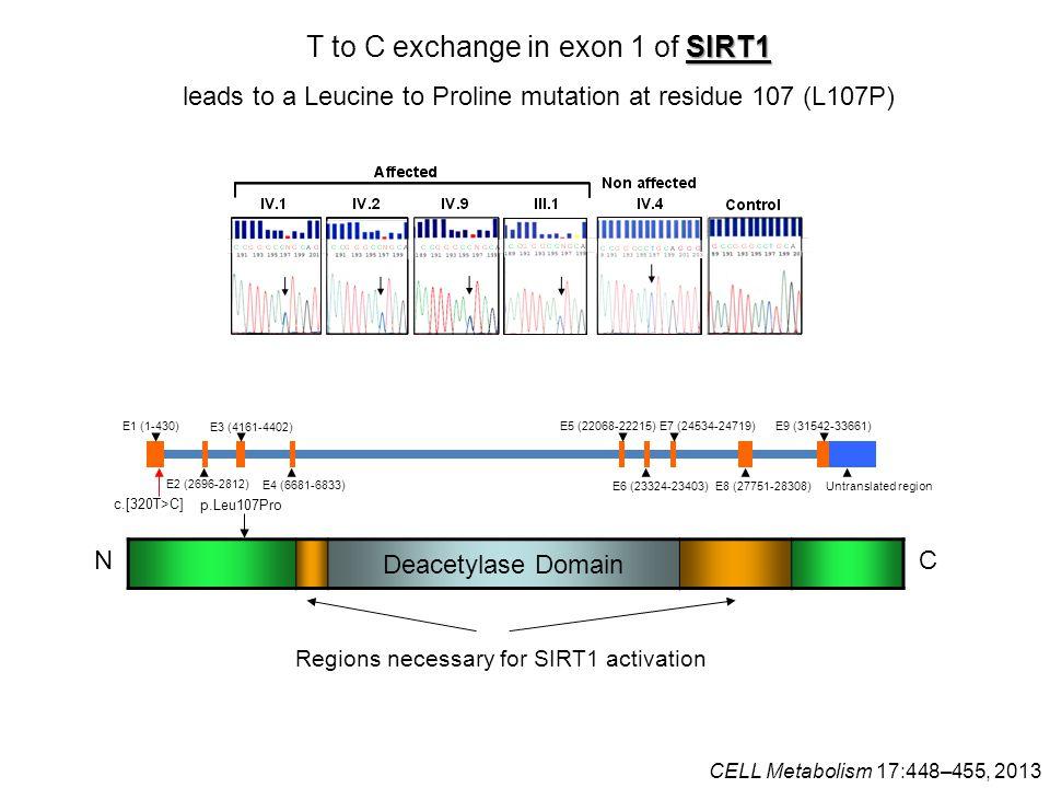 N C Deacetylase Domain Regions necessary for SIRT1 activation E1 (1-430) c.[320T>C] E2 (2696-2812) E3 (4161-4402) E4 (6681-6833) E5 (22068-22215) E6 (